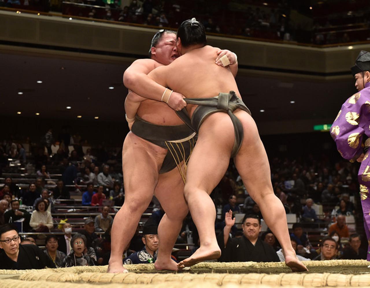 相撲編集部が選ぶ 初場所7日目の一番   BBMスポーツ   ベースボール ...