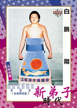 No.43白鵬翔